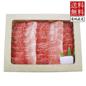 飛騨牛 焼肉 18630011 (代引不可・送料無料) 出荷可能時期:〜8月31日まで (2019 お中元 限定)|bighand