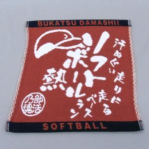 卒業記念品 部活魂 競技別ミニタオル(ソフトボール)