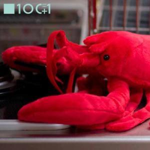 ☆ ぬいぐるみ101 海の生き物のヌイグルミ ロブスター SM124 bigstar