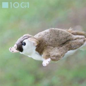 ☆ ぬいぐるみ101 動物のヌイグルミ モモンガ SM158|bigstar