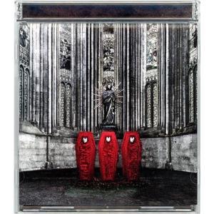 【在庫一掃】BABYMETAL/BABYMETAL(初回生産限定盤)◆C【ゆうパケット対応】【即納】|bii-dama