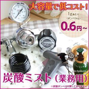 炭酸ミスト 業務用  あすつく 送料無料 酸ミストシャワーをプロユースに改良大容量ボンベ5kgの使用で低コスト!(プレゼント ギフト)(バレンタイン)|bijinsyokunin