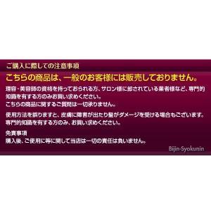 ナプラ ケアテクトOGカラー2剤/1000ml あすつく (5個で送料無料)(OX6%)(OX3%)(AC OX2.4%)(医薬部外品)(※一般の方には販売致しません)(プレゼント ギフト)|bijinsyokunin|02