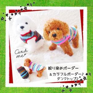 犬 服 犬の服  犬服 おしゃれ 春夏用 ペット用品 安い ボーダーの服 小型犬用 トイプードル タ...
