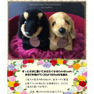 ◆ サイズ : 横幅:37cm 高さ:17cm 前幅:11cm   ◆ 新品タグ付き  ◆ 犬種:ミ...