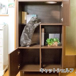 人と猫の共存生活 キャットシェルフ / キャットタワー 収納ラック ねこハウス キャットウォーク 棚 rue bikagu