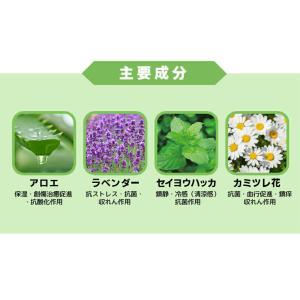 韓国コスメ レッツスキン アロエベラ97.5%モイスチャースージングゲル(1個)ジェル Let's Skin ダーマル DERMAL スキンケア 正規品|bikatsu|06
