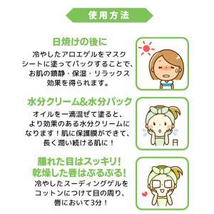 韓国コスメ レッツスキン アロエベラ97.5%モイスチャースージングゲル(1個)ジェル Let's Skin ダーマル DERMAL スキンケア 正規品|bikatsu|07