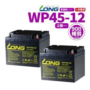 LONGバッテリー WP45-12 12V45Ah 密閉型 多用途 バッテリー 2個セット 新品 Smart-UPS バイクパーツセンター|bike-parts-center