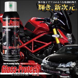 ボディコーティング剤 グラスプロテック Ver.2 【厳選】洗車洗車 ボディーコーティング 樹脂【ケミカル】 バイクパーツセンター|bike-parts-center