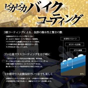 ピカピカバイクコーティグセット bikebuhin 02