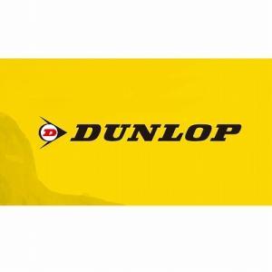 ダンロップ DUNLOP 151535 リムバ...の関連商品1