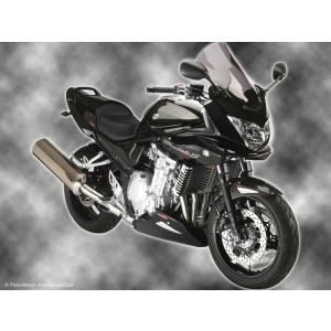 Power Bronze パワーブロンズ 420-S107-002 フリップスクリーン バンディット1200S/1250S (06- ) ダークスモーク