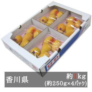 茂木びわ 約250g×4パック(約1kg) 香川県産
