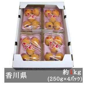 田中びわ 約250g×4パック(約1kg) 香川県産