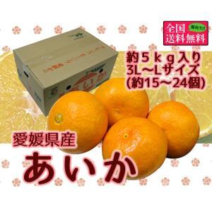 あいか 約5kg 3L-Lサイズ(約15-24個入り) 愛媛県産