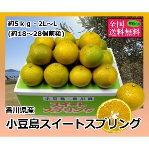 小豆島スイートスプリング 約5kg2L-L(18-21個入り) 香川県産