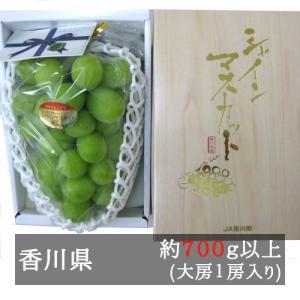 シャインマスカット 大房1房入り(730g以上) 香川県産 bimi-shunka