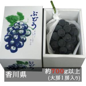 ピオーネ 大房1房入り(700g以上) 香川県産 bimi-shunka