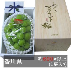 シャインマスカット 秀品1房入り(640g以上) JA香川県 bimi-shunka