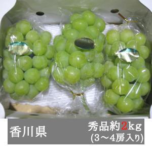 瀬戸ジャイアンツ 秀品 約2kg(3-4房入り) JA香川県 bimi-shunka