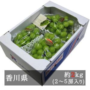 シャインマスカット 約2kg入り(3-5房) 香川県産 bimi-shunka