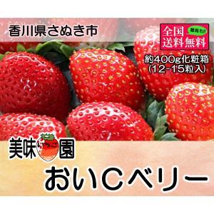 美味いちご園 おいCベリー 大粒約400g化粧箱入り(12-...