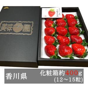 美味いちご園 さぬきひめ 大粒約400g化粧箱入り(12-15粒) 香川県産