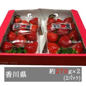 美味いちご園 さぬきひめ 大粒約270g×2パック 香川県産