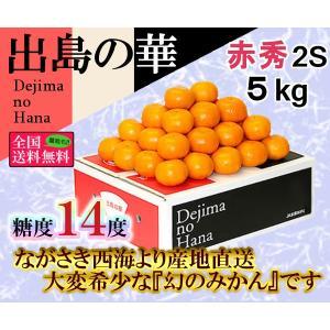 出島の華 赤2S・5kg 長崎県産