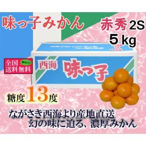 味っ子みかん 赤2S・5kg 長崎県産