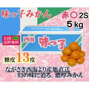味っ子みかん 赤○2S・5kg 長崎県産