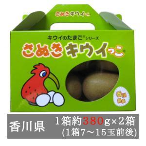 さぬきキウイっこ 2箱入り(1箱7-15玉程度) 香川県産