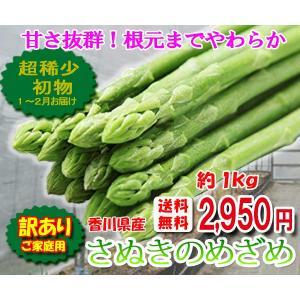 香川県オリジナルアスパラガス 訳ありさぬきのめざめ 約1kg サイズ混合