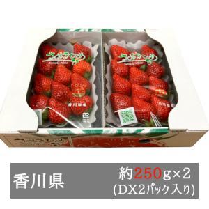 DXさぬきひめいちご 約270g×2パック 香川県産