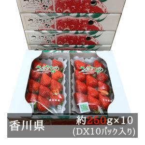 DXさぬきひめいちご 約270g×10パック 香川県産