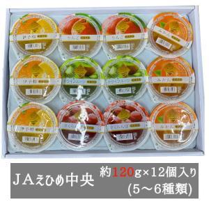 まるごと果樹園ゼリー詰合せ 155g×12個入り(6種類) JAえひめ中央 bimi-shunka