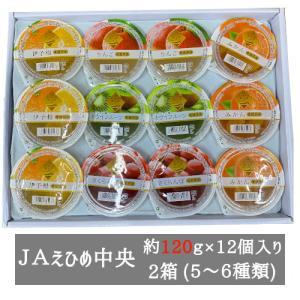まるごと果樹園ゼリー詰合せ 155g×12個入り(6種類)2箱セット JAえひめ中央 bimi-shunka