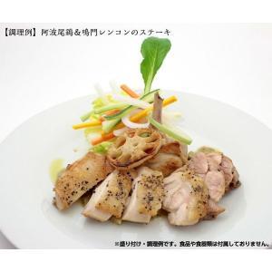 プレミアムギフト(鳴門鯛ソース&専用オリジナルレードル)|bimifoods-store|05