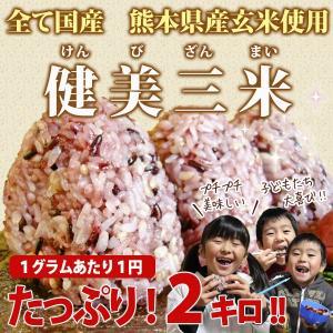 雑穀米 完全国産100% 健美三米 熊本県産雑穀米 たっぷり...
