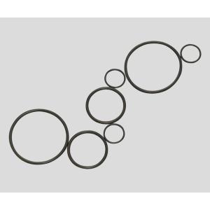 フッ素ゴムOリングP-22|biomedicalnet