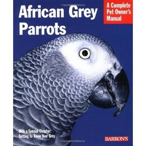 AFRICAN GREY PARROTS〜Complete Pet Owner's Manual|bird-style