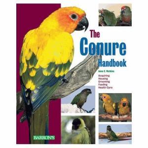 THE CONURE HANDBOOK|bird-style
