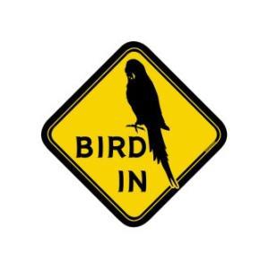 BMオリジナル / BIRD IN ステッカー セキセイ / 9992023