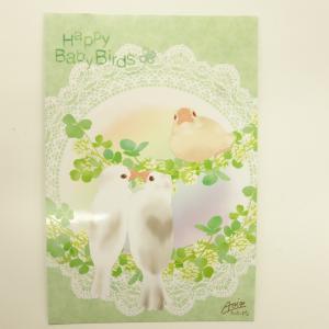 とっ・とっ・pi♪ / ポストカード・Happy Baby Birds / 文鳥 / 197A0105