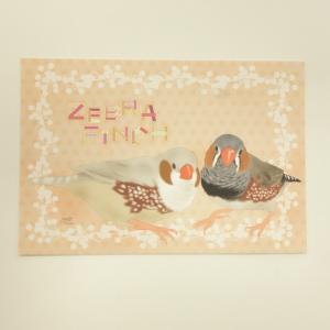 とっ・とっ・pi♪ / ★ポストカード・ZEBRA FINCH / キンカチョウ / 197A0109