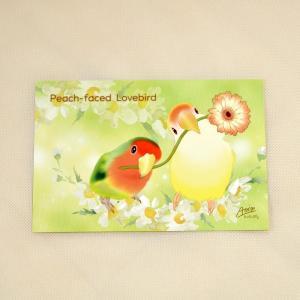 とっ・とっ・pi♪/ ポストカード/コザクラインコ?/ 197A0209◆ クロネコ DM便 可能 ( 鳥用品 鳥グッズ 鳥 とり トリ プレゼント)|birdmore