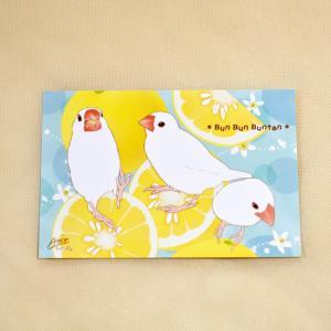 とっ・とっ・pi♪ / ポストカード・文旦 / 白文鳥? / 197A0210