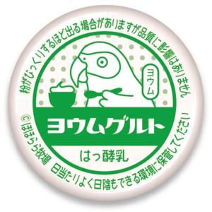 ほほらら工房 / 缶 バッジ ( 牛乳 キャップ ) / ヨウム / 244A0207◆クロネコDM便可能 ( 鳥用品 鳥グッズ 鳥 とり トリ )|birdmore