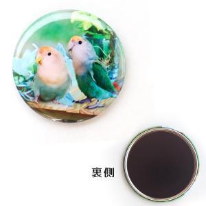 tokyoShiori / マグネット04/コザクラインコ / 245A0222